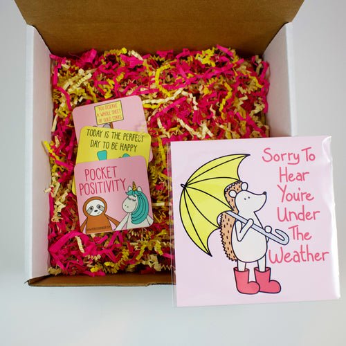 Build Your Own Under The Weather Hedgie Care Package
