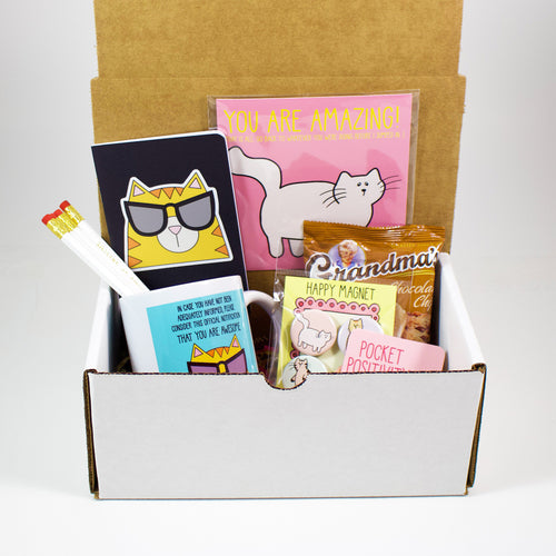 The Cat Mug Care Package