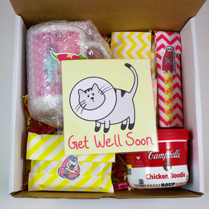 The Cat Get Well Care Package