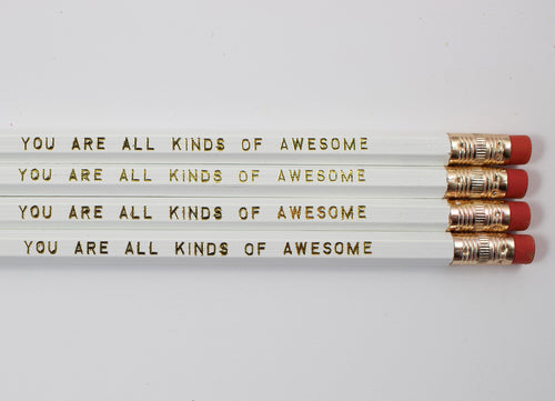Set Of 4 You Are All Kinds Of Awesome Pencils
