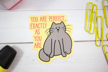 Load image into Gallery viewer, You Are Perfect Exactly As You Are Cat Vinyl Sticker  - Water And Weather Proof!