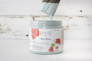 Dune Grass | Clay-Based All-In-One Décor Paint