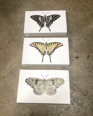 Butterfly Wooden Signs