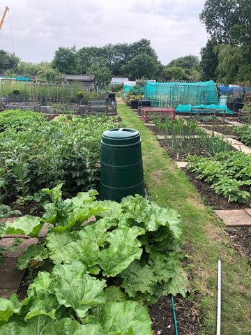 eco gardening and organic gardening on the rise