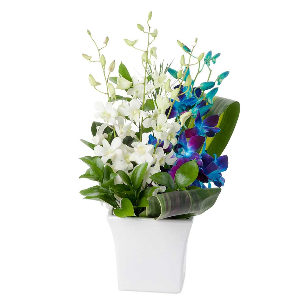 Blue and white flower arrangement