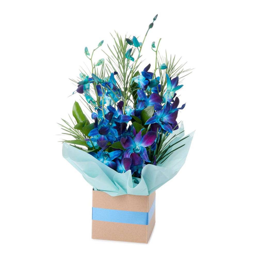 Blue flowers in a box with blue ribbon and cellophane