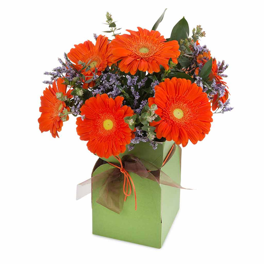 Orange Delight - Click For Flowers