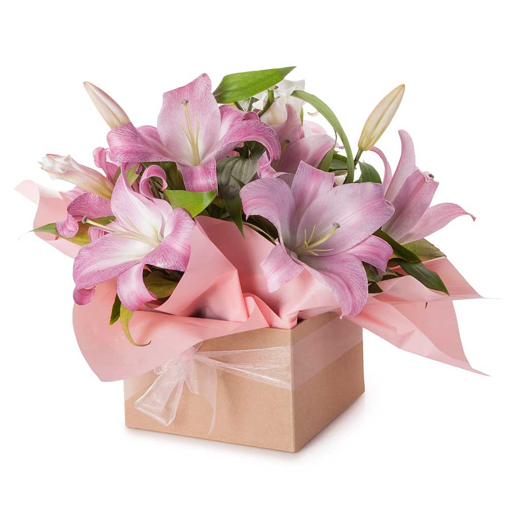 Sweet Lily - Click For Flowers