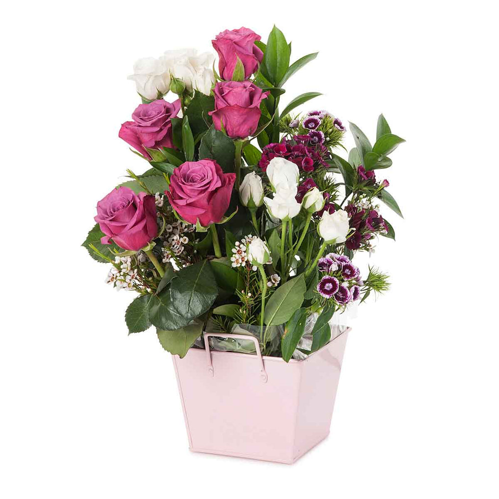 Pink Rose Delight - Click For Flowers