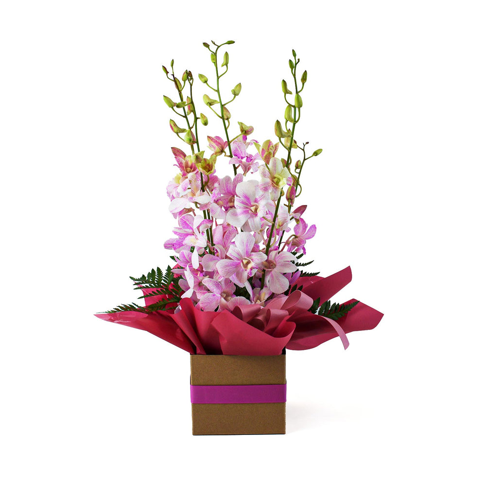 Pink Orchid Box