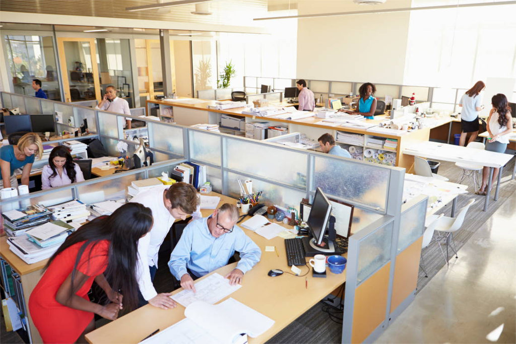 Noise is a Main Annoyance in Open Offices