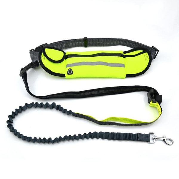 Handsfree Bungee Dog Leash