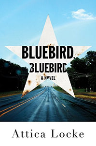 Bluebird, Bluebird (Thorndike Press Large Print African-American)