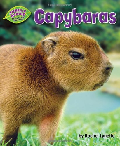 Capybaras (Jungle Babies Of The Amazon Rain Forest)