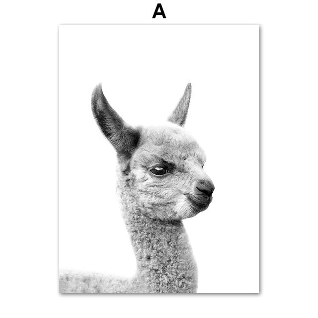 Black & White Animal Wall Art | Free Shipping Over $50