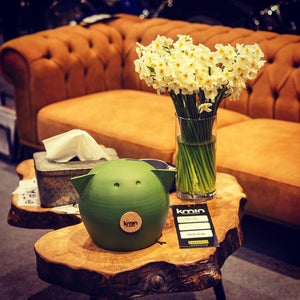 Green Golden Piggy bank