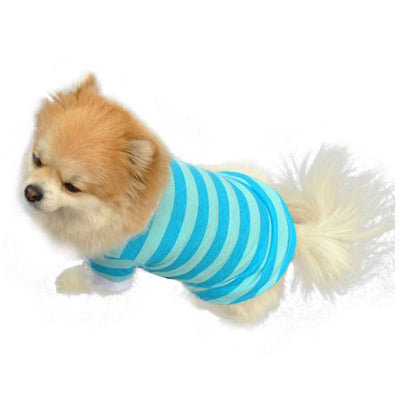 Cute T-Shirt with Cool Design For Dog