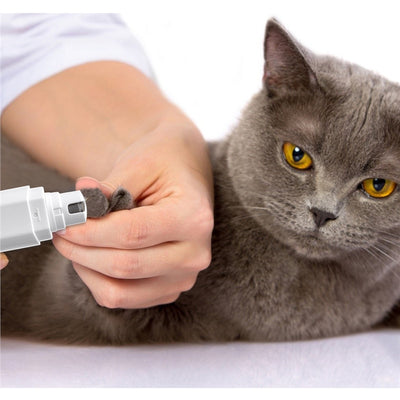 Electric Pet Nail Grinder with Rechargeable Lithium Battery Painless