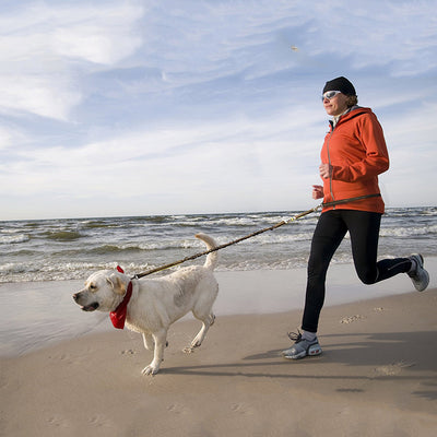 Hands Free Dog Leash for Running, Walking Hiking Biking