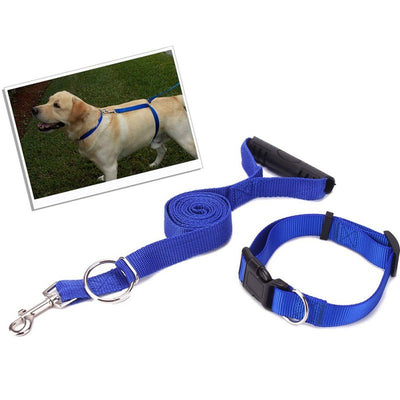 Trainer Leash with Collar for Training For Large Dog