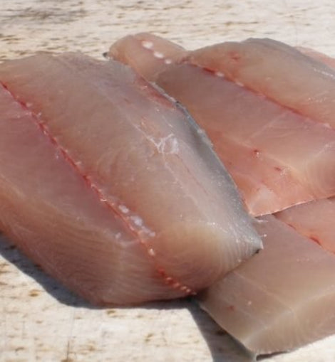 Surmai/SeerFish/KingFish 250gm