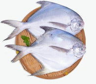 Silver Pomfret 500gm (3-4 whole medium size fish)