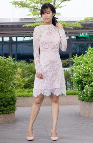 Drape Collar Delicate Lace Dress