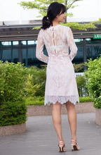 Load image into Gallery viewer, Drape Collar Delicate Lace Dress
