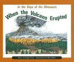 When Volcano Erupted Is (Pm Story Books Turquoise Level)