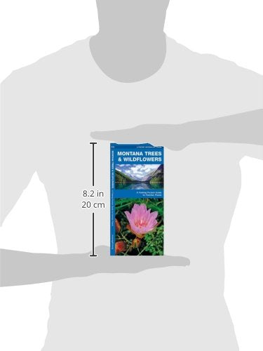 Montana Trees & Wildflowers: A Folding Pocket Guide To Familiar Species (A Pocket Naturalist Guide)