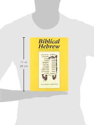 Biblical Hebrew  (Supplement For Advanced Comprehension) (Yale Language Series)