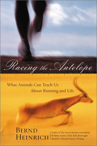 Racing The Antelope: What Animals Can Teach Us About Running And Life
