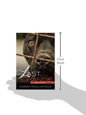 Last Chance (Robyn Hunter Mysteries)