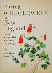 Spring Wildflowers Of New England