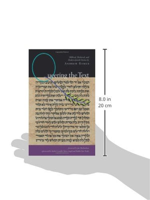Queering The Text: Biblical, Medieval, And Modern Jewish Stories (White Crane Wisdom)