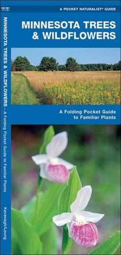 Minnesota Trees & Wildflowers: A Folding Pocket Guide To Familiar Species (A Pocket Naturalist Guide)