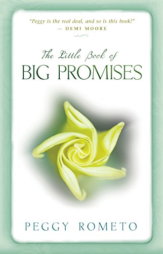 The Little Book Of Big Promises