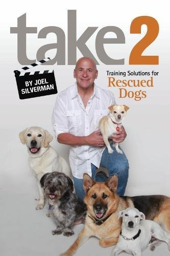 Take 2: Training Solutions For Rescued Dogs
