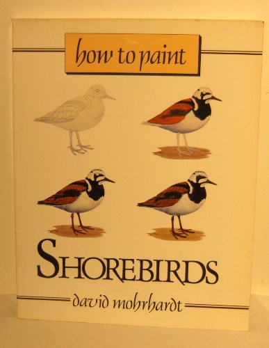 How To Paint Shorebirds