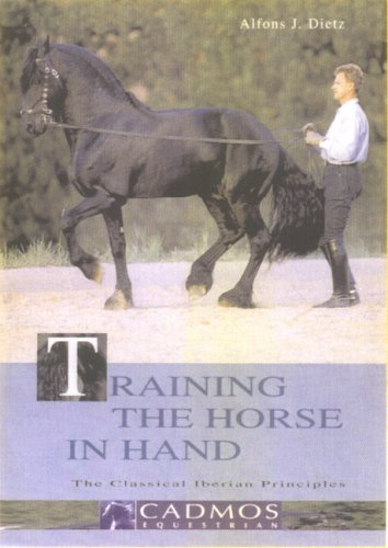 Training The Horse In Hand: The Classical Iberian Principles