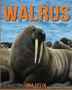 Walrus: Children Book Of Fun Facts & Amazing Photos On Animals In Nature - A Wonderful Walrus Book For Kids Aged 3-7