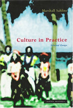 Culture In Practice: Selected Essays