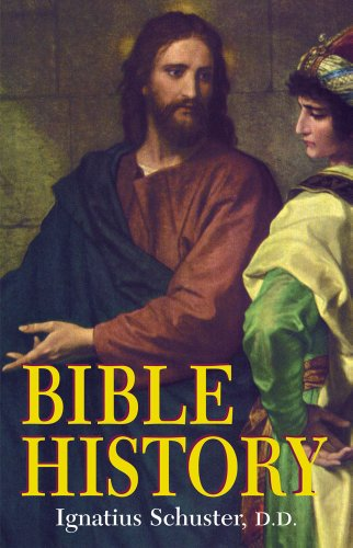 Illustrated Bible History Of The Old And New Testaments For The Use Of Catholic Schools