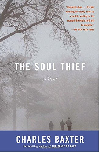 The Soul Thief (Vintage Contemporaries)
