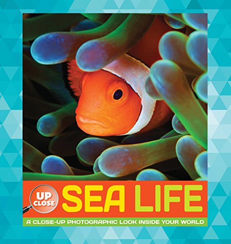 Sea Life: A Close-Up Photographic Look Inside Your World (Up Close)