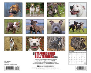 Just Staffordshire Bull Terriers 2014 Wall Calendar