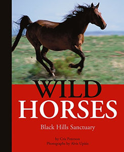 Wild Horses: Black Hills Sanctuary
