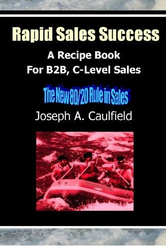 Rapid Sales Success: A Recipe Book For B2B, C-Level Sales