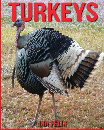Turkeys: Children Book Of Fun Facts & Amazing Photos On Animals In Nature - A Wonderful Turkeys Book For Kids Aged 3-7