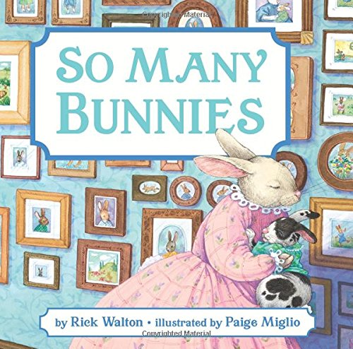 So Many Bunnies Board Book: A Bedtime Abc And Counting Book